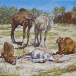 53-Cinq dromadaires, huile sur toile, 24x19, disponible à la vente.