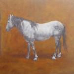 75-Cheval gris, huile sur toile, 22x27.