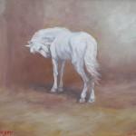 77-Cheval blanc, huile sur toile, 22x27, disponible à la vente.